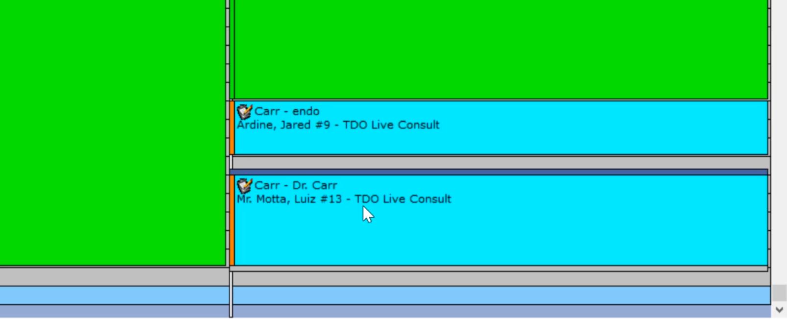 TDO Live Consult - Calendar Screenshot